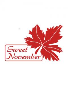 logo_sweetnovember_site